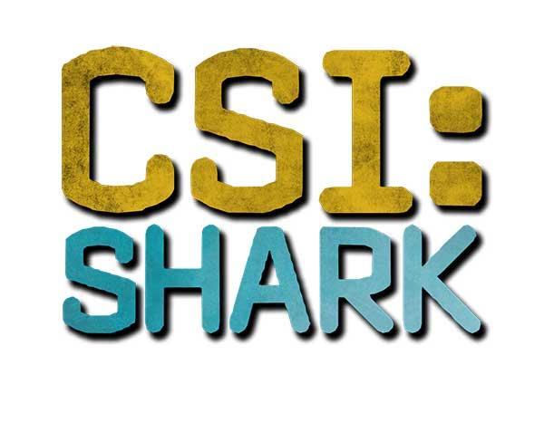 csi-shark