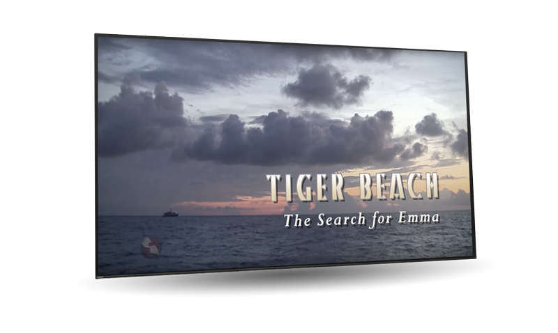 TV-mock-tiger-beach