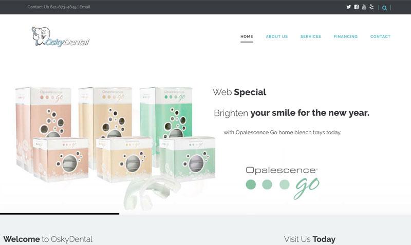 TN-Portfolio-web-osky