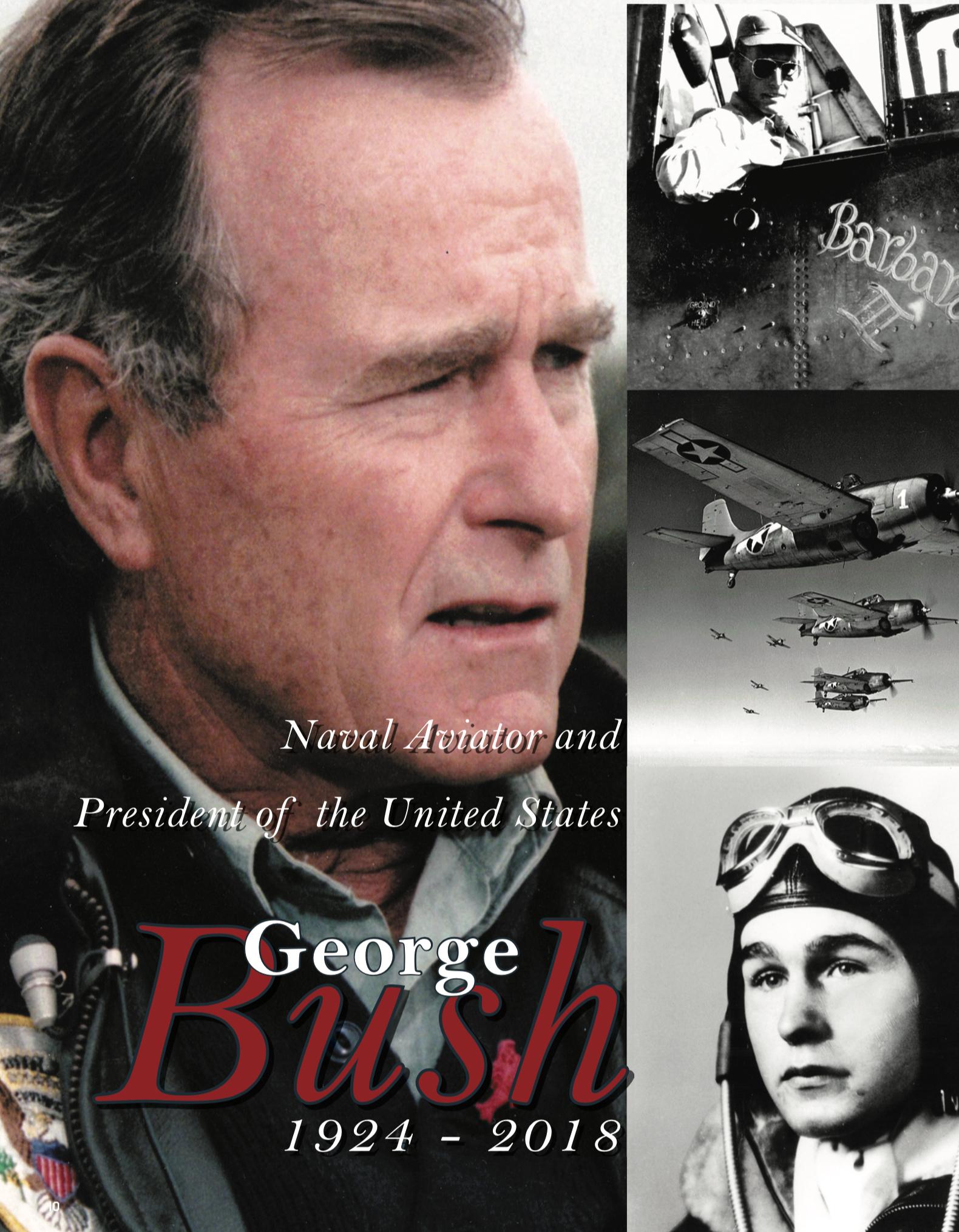 G-Bush-title
